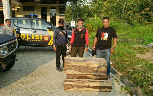 Photo of 2 Bulan Kabur, Polsek Pulung Akhirnya Berhasil Amankan Tersangka Ilegal Loging