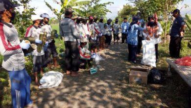 Photo of Disperta Kendalikan 20 Hektar Lahan Pertanian Dari Serangan Tikus