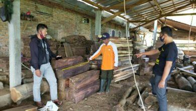 Photo of Polsek Sambit Amankan Komplotan Pencuri Kayu Sono