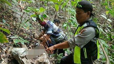 Photo of Kerangka Mr X Di Poko Jambon, Diperkirakan Meninggal Saat Bertapa
